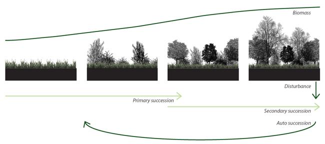 Landscape Architecture In Arid Climates Cntxt Studio